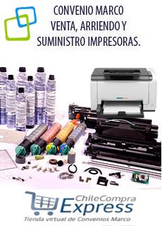 CARTUCHO DE TINTA EPSON T042220